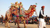 Private 3-Night Jaipur, Ajmer, and Pushkar Tour, Jaipur, Multi-day Tours