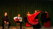 Flamencoshow in Madrid met een sightseeingtour in de avond en een optioneel diner, Madrid, Stadstours