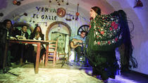 Granada Flamenco Show in Albaicin with Optional Dinner, Granada, Dinner Packages