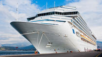 Private Malaga Transfer: Central Malaga and Costa del Sol to Cruise Port, Malaga, Port Transfers