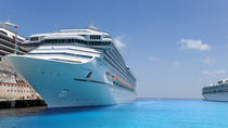 Private Malaga Transfer: Cruise Port to Central Malaga and Costa del Sol, Malaga, Port Transfers