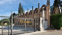 Small-Group Torres, Codorníu and Jean Leon Wineries Day Trip from Barcelona with Tastings and ...