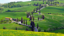 Pienza Val d'Orcia Montalcino Brunello Wine and Pecorino Cheese PRIVATE TOUR from Siena, Siena, ...