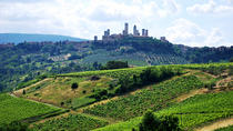 San Gimignano and Chianti Classico Wine and Food PRIVATE TOUR from Siena, Siena, Private ...