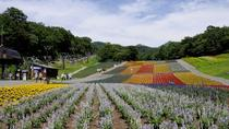 Fukiware Falls, Lavender Fields and Peach Orchard Day Trip from Tokyo , Tokyo, Seasonal Events