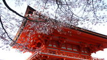 Kyoto Afternoon Tour to Heian Shrine, Sanjusangendo Hall and Kiyomizu Temple from Osaka, Osaka, ...