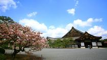 Kyoto City Tour: Golden Pavilion, Nijo Castle, Kyoto Imperial Palace and Handicraft Center, Kyoto,...