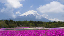 Mt Fuji Day Trip with Heritage Walking Tour from Tokyo, Tokyo, Cultural Tours