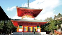 Mt Koya Tour with Overnight Stay at Fukuchi-in Temple by Rail from Osaka, Osaka