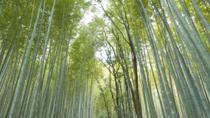Sagano Bamboo Grove and Arashiyama Walking Tour With Yakatabune Lunch Cruise