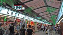 Tokyo Day Tour: Meiji Shrine, Asakusa Temple and Tokyo Bay Cruise