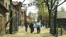 Auschwitz-Birkenau Memorial and Museum English and Spanish Guide from Krakow - AFTERNOON TOUR, ...