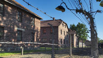 Auschwitz-Birkenau Memorial and Museum from Kraków: Afternoon Tour