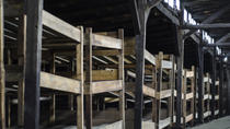 Auschwitz-Birkenau Museum Half-Day Trip from Krakow, Krakow, Day Trips