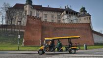 Private Tour: Krakow City Sightseeing by Electric Car, Krakow, Segway Tours