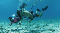 Punta Cana Party Cruise with Hooka Diving and Snorkeling, Punta Cana, Day Cruises