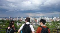 1-Day Private Sendai Tour, Tohoku, Private Sightseeing Tours
