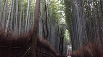 Arashiyama and Sagano Walking Food Tour, Kyoto, null