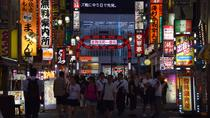 Shinjuku evening highlights food and drink tour, Tokyo, Food Tours