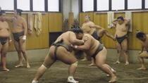 Visit to Sumo Morning Practice, Tokyo, Walking Tours