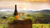 Private tour from Livorno port to Chianti wine region, Livorno, Private Sightseeing Tours