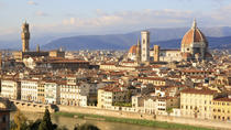 Private tour from Livorno port to Florence & Chianti wine region, Livorno, Private Sightseeing Tours