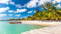 Punta Cana Day Trip: Saona Island by Speedboat and Catamaran, Punta Cana, Day Trips