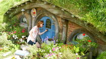 Waitomo Day Trip with Option to Add Hobbiton from Auckland