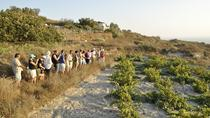 Santorini Wine Tasting and History Tour, Santorini, Wine Tasting & Winery Tours
