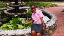 Cayman Crystal Caves , Star Fish Point, Rum Point, Cayman Islands, Cultural Tours