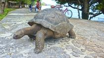 Grand Cayman Private Tour: Western Island Historical Tour, Cayman Islands