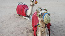 4x4 Dubai Desert Safari with Dune Bashing, Sandboarding, Camel Riding and BBQ Dinner, Dubai