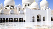 Abu Dhabi Shore Excursion: Sheikh Zayed Mosque and Falcon Hospital, Abu Dhabi