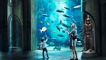 Atlantis Aquaventure of Lost Chamber Entry met optionele privé transfers in Dubai, Dubai, Attraction Tickets