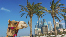 Dubai Super Saver: Sightseeingtour Dubai Stad en woestijnsafari, Dubai, Super Savers