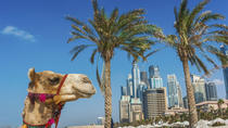 Dubai Superspar: sightseeingtur i staden och ökensafari, Dubai, Super Savers
