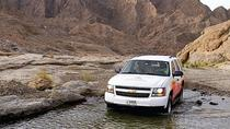 Hatta Heritage Village and UAE Desert Tour by 4x4 from Dubai, Dubai, Helicopter Tours