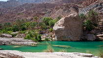 Private 4x4 Wadi Safari - An Encounter with Nature, Muscat, Bus & Minivan Tours