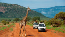 Full-Day Nairobi National Park, Elephant Orphange, Giraffe Centre and Karen Blixen Museum Tour from ...