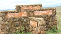 Half day Nairobi safari, Nairobi, Cultural Tours
