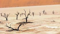 3-Hour Deadvlei Sossusvlei Tour, Namibia, Half-day Tours