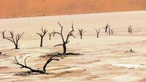 Deadvlei and Sossusvlei Tour by ATV, Namibia, null