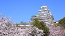 11-Day Sakura Cherry Blossom Tour from Tokyo, Tokyo, Custom Private Tours