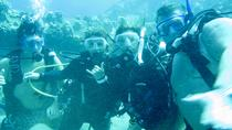 Introduction Dive No Experience or Certification Needed, Big Island of Hawaii, Scuba Diving