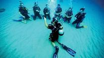 One Tank Introductory Dive No Experience or Certification Needed, Big Island of Hawaii, Scuba Diving