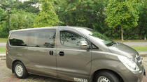 Private Singapore Departure Transfer: Hotel to Changi Airport, Singapore, Airport & Ground Transfers