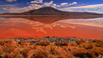 2-Days Uyuni Salt Flats including Laguna Colorada, Uyuni, Private Sightseeing Tours
