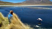 3-Day, 2-Night Uyuni Salt Flats with English Guide, Shared Tour from Uyuni, Uyuni, Multi-day Tours