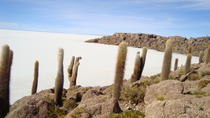 Private Day Trip Salar de Uyuni, Uyuni, Private Sightseeing Tours