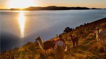 Private Tour 2 Days, Lake Titicaca and Sun Island from La Paz, English Guide, La Paz, Private...